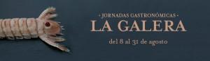 HPV - Jornadas La Galera - NewsLetter