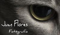 Fotógrafo Juan Flores